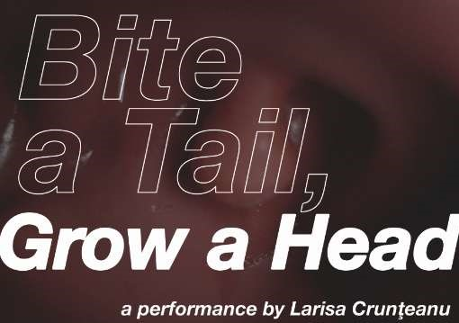 Bite a Tail, Grow a Head