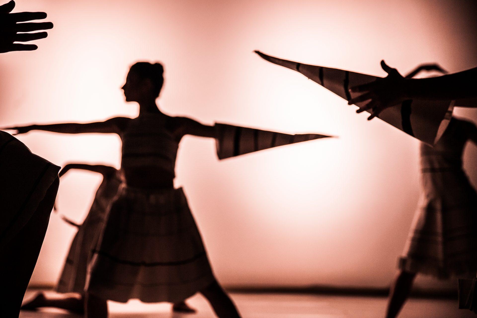 Reenacting Lizica Codreanu & Rythmodia