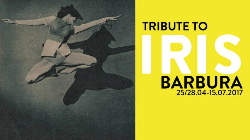 Tribute to Iris Barbura